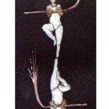 il-museum_circo de locos_0000s_0008_Complementos